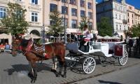 Krakowianka_Maja_09.JPG